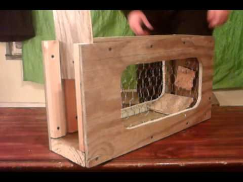 Homemade humane squirrel and or rabbit trap