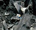 File:David Johnston near crest of the bulge on the north side of Mount St. Helens, 17 May 1980 (USGS) cropped 2.JPG - Wikipedia