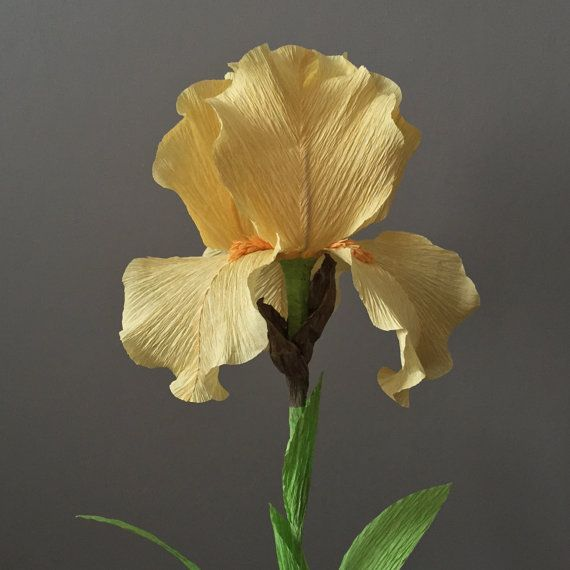 Crepe Paper Bearded Iris, Single Stem - Wedding Flowers - Home Decor - Florist Supply - Paper Flowers