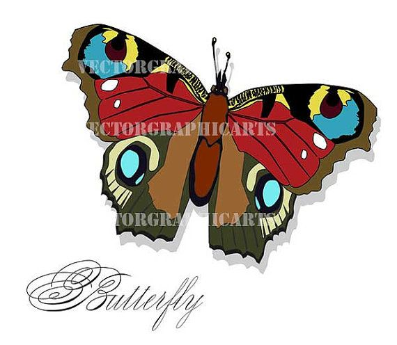 Butterfly. Digital Clipart. Graphic Design. от VectorGraphicArts