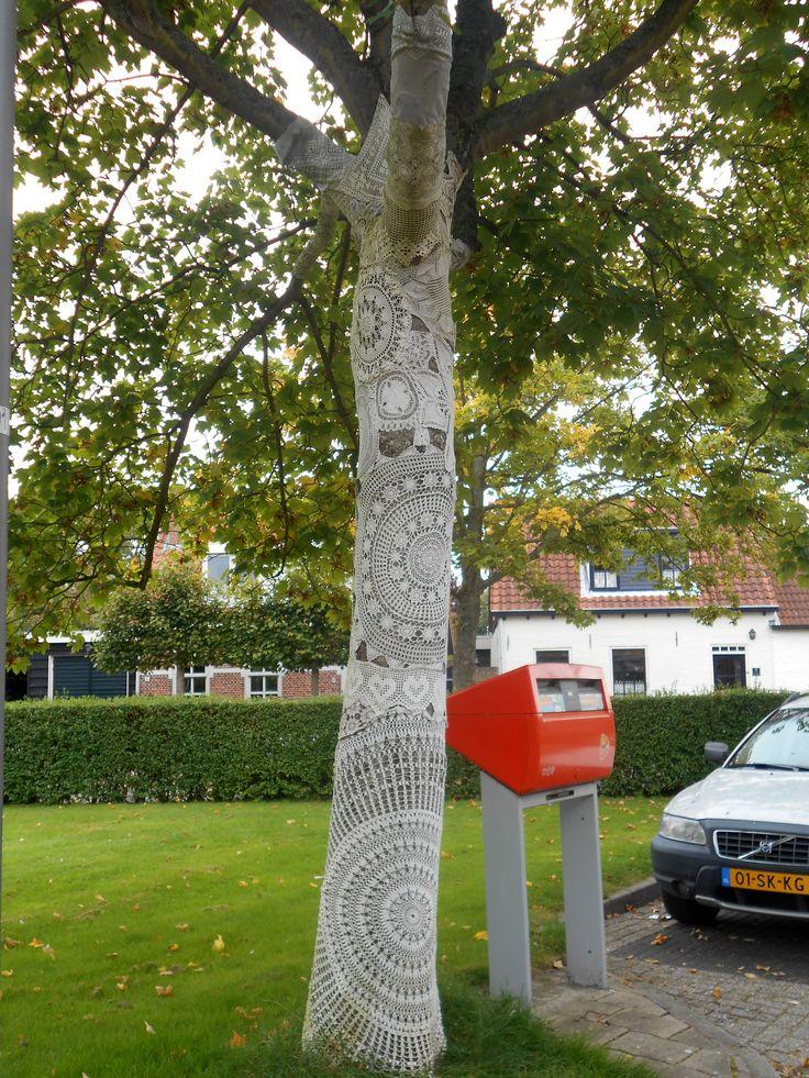 ingepakte boom in Kattendijke