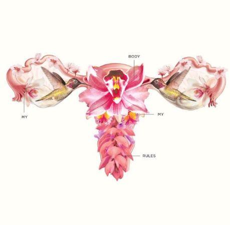 #uterus #utero