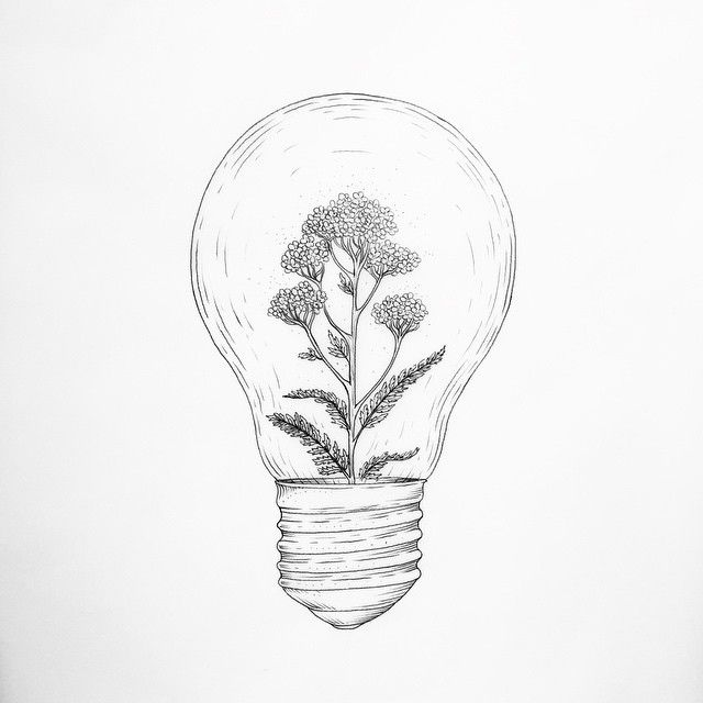 """""""[ illuminature ] been seeing a lot of common yarrow flowers around the joint and had a bright idea""""...Caitlin Thomas"""