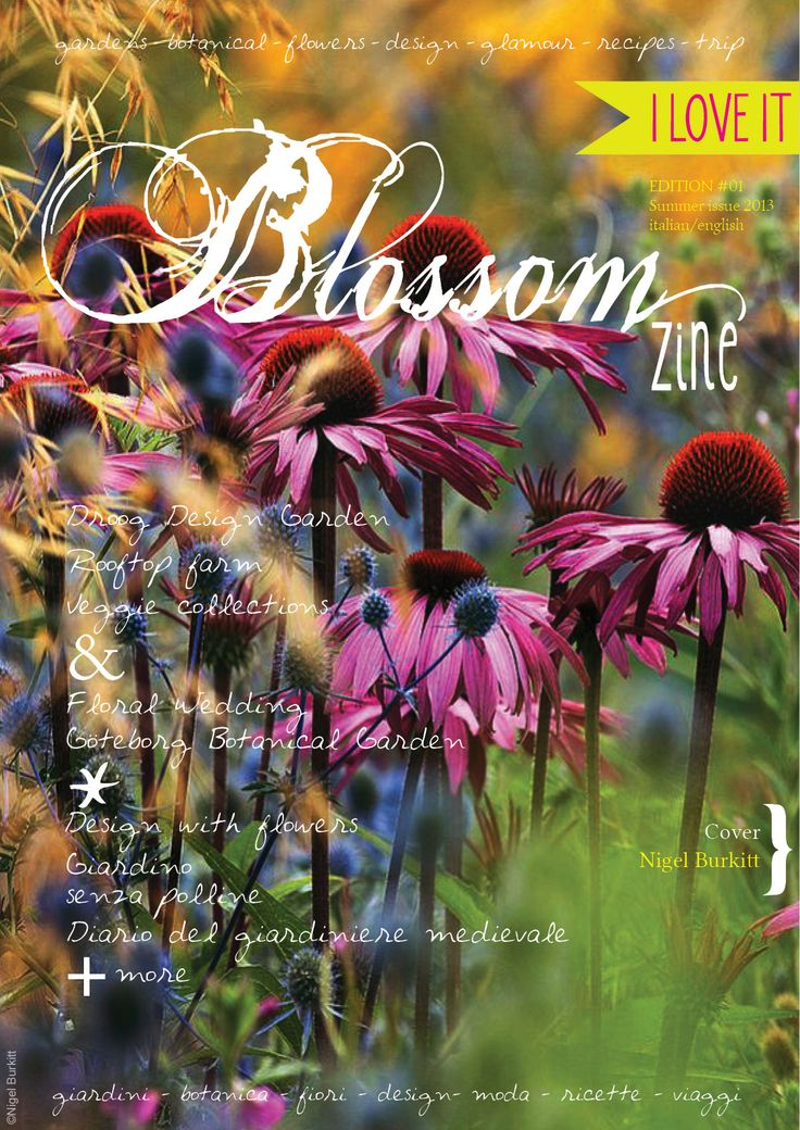 The first issue of Blossom Zine is just published. My contribution is on page 64.  The first digital quarterly magazine dedicated to anything green, from gardening to design, vegetarian and traditional cooking, fashion, botany and flower bouquets.  http://blossomzine.eu/