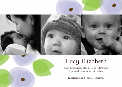 sweet blooms baby announcement - snappish