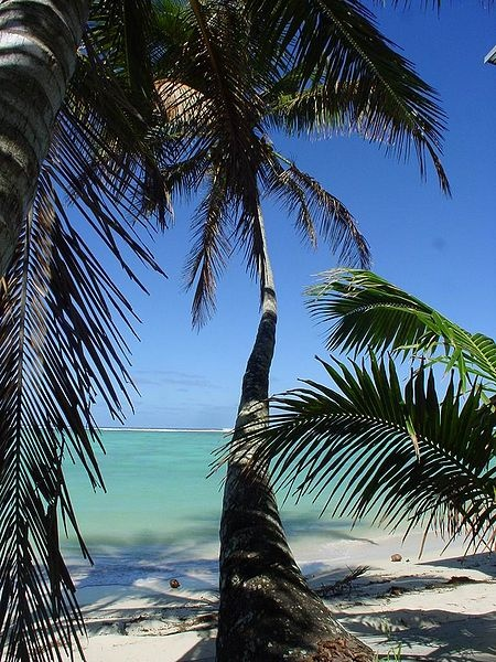 Cook Island Vacation