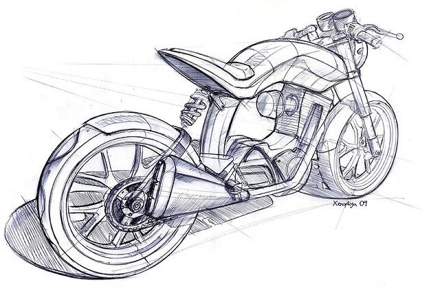 Ruby-Rear-Sketch