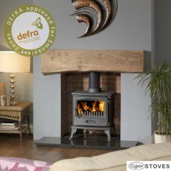 log burner- nice fireplace. Would it need to be wider (room for logs)?