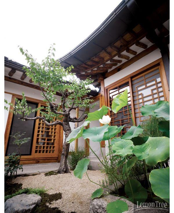 모던 한옥, 여덟 개의 힐링 정원 이야기 | (Modern Hanok, a healing garden)  | Daum라이프