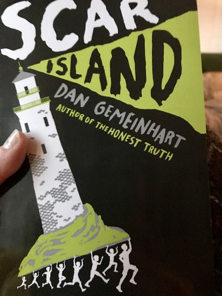 The Island Book Summary and Study Guide