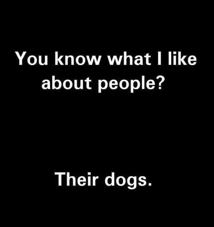 You know what I like about people? Their dogs. #lol #crazydoglovers
