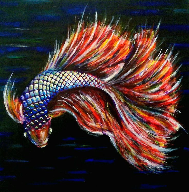 22 best meerm dchen mermaid images on pinterest for Betta fish painting