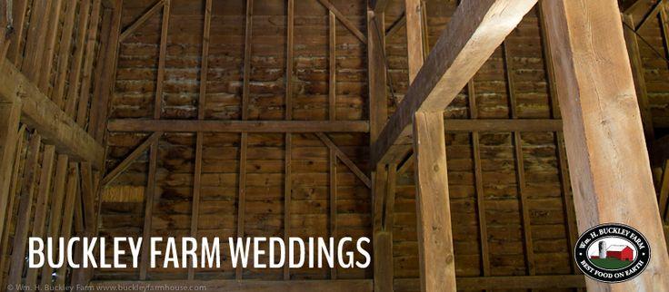 Farm with barns, two farmhouses for accommodations near Ballston Lake, NY