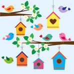 Colorful birds and birdhouses in spring