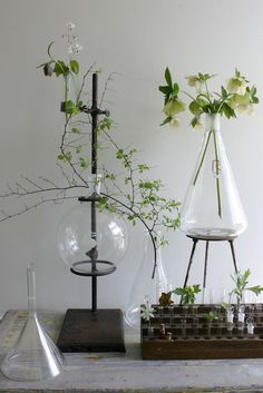 science wedding ideas - Google Search