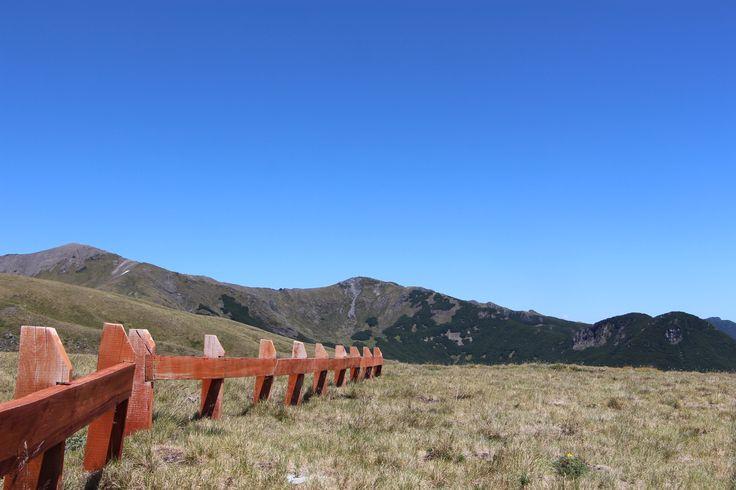 Pampa de los Coirones, Reserva Nacional Mocho Choshuenco.