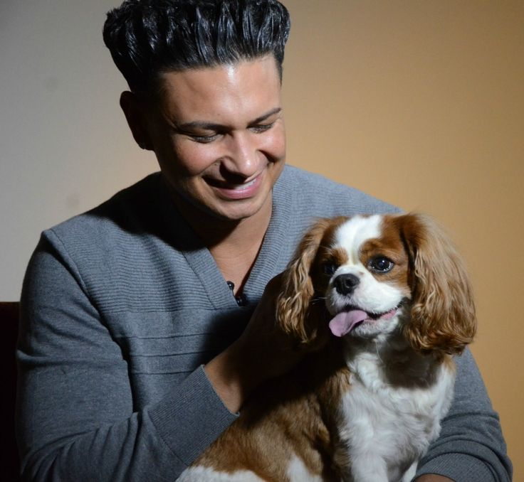 Jersey Shore's Pauly D loves shelter dogs too! Watch this video we filmed with him to support pet adoption: www.aspca.org/blog/dj-pauly-d-joins-aspca-celebrating-adopt-shelter-dog-month
