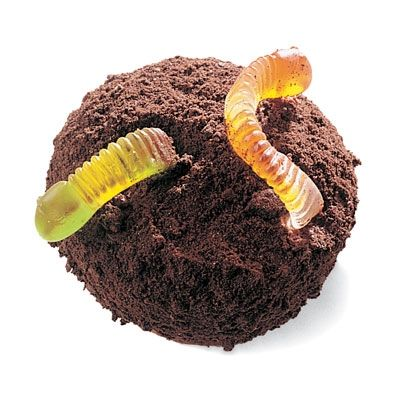W Is For Worms Cupcake