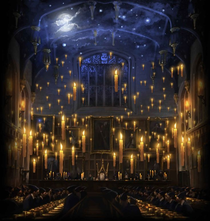 Try to re-create the enchanted Great Hall from Harry Potter, bringing the night sky indoors.
