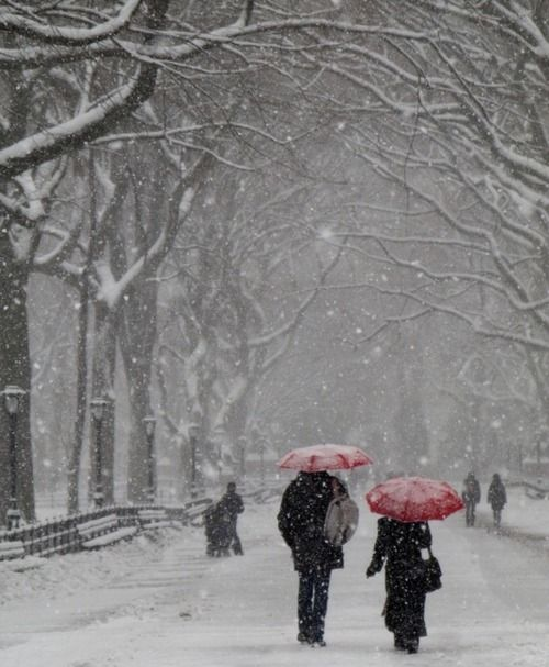 Winter in New York City's Central Park, lived their when I was young,played at Central Park!!!