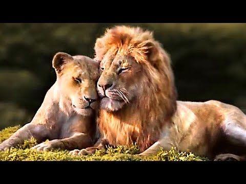 The Lion King Simba Nala Love Scene Trailer 2019