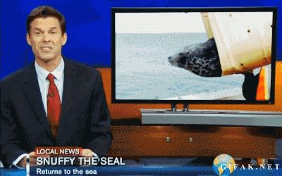 Who Killed Snuffy the Seal - Chevereto