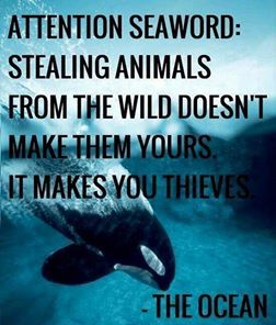 Peta2 [youth animal rights group] and others have officially put up a lawsuit against Miami Seaquarium