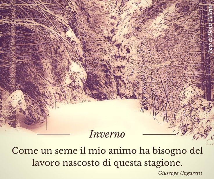 Quote by Giuseppe Ungaretti #quotes #quote #aforismi #nature #natura #flowers #citazioni #naturequotes #Ungaretti #Giuseppe #GiuseppeUngaretti