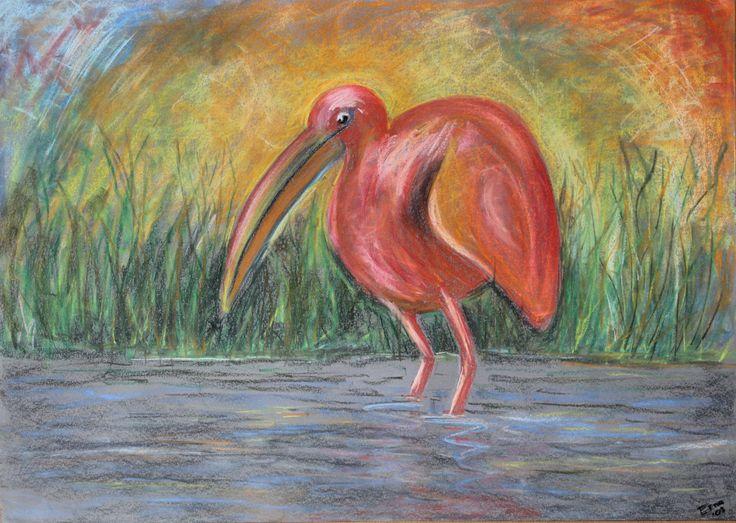 """'Vogel in water"""" :pastelkrijt op papier door Erna Feijge"""
