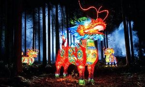 Groupon - Admission for Two or Four to Zoominations Lantern Festival at Tampa's Lowry Park Zoo (Up to 51% Off) in Tampa's Lowry Park Zoo. Groupon deal price: $25