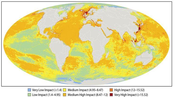 human impact on marine ecosystems
