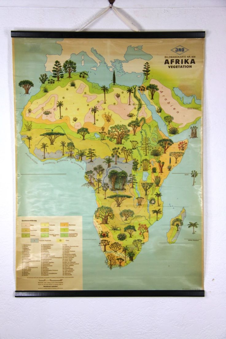 Vintage Africa Tree Map 334 best maps pictorial