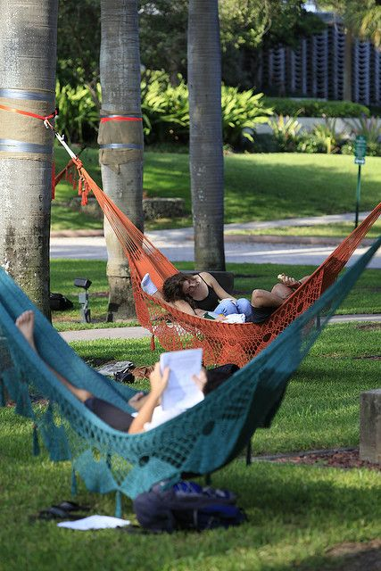 Sleeping or studying? by University of Miami Admissions, in Flickr