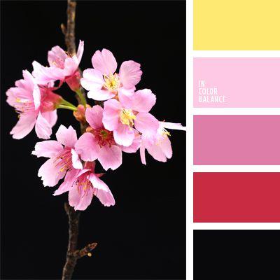 color rojo con tono rosado, combinación de colores, negro y amarillo, negro y rojo, negro y rosado, rojo, rojo sonrosado, rosado fuerte, rosado pálido, rosado y amarillo, tonos rosados.