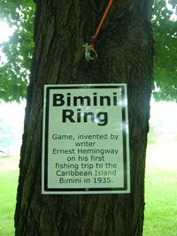 Ring game, Game and Rings on Pinterest