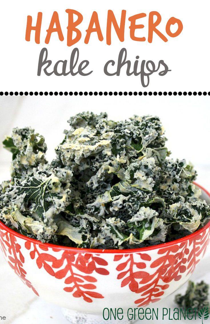 ... July! on Pinterest | Lentil burgers, Kale chips and Vegan sloppy joes