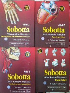 SOBOTTA: ATLAS ANATOMI MANUSIA (ORI) - ed. 23 - 3 jld + Tabel  Contact Person WA: 088213173421
