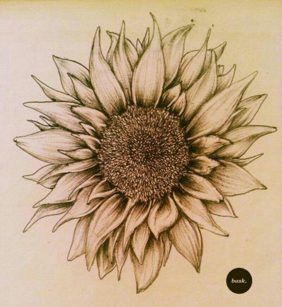 Sunflower- future tattoo?