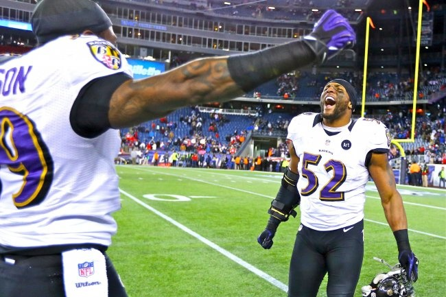 Baltimore Ravens win AFC North Championship 2013 against the NE Patriots