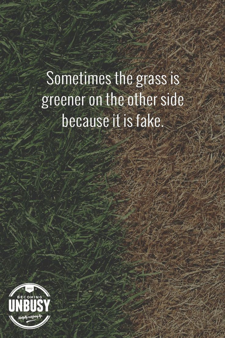 Sometimes the grass is greener on the other side because it's fake. So true!