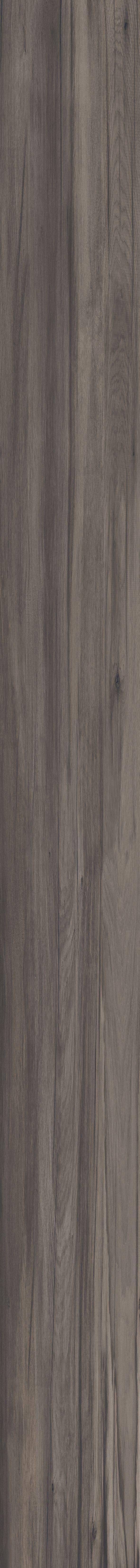 24 best dolphin images on pinterest ceramic tile floors doga ceramica 40x170cm dolphin coal di abkemozioni ceramic tiles floor dailygadgetfo Images