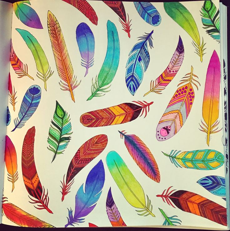 #feather #johannabasford #johannabasford_repost #enchangedforest #forest #color #coloris #coloringforadults #coloring #art #artistic #artofcolors #relationshipgoals #relax #relaxing #proud