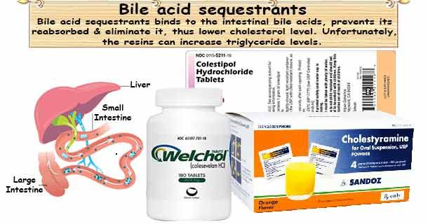 Cholesterol Medicine Bile Acid Sequestrants