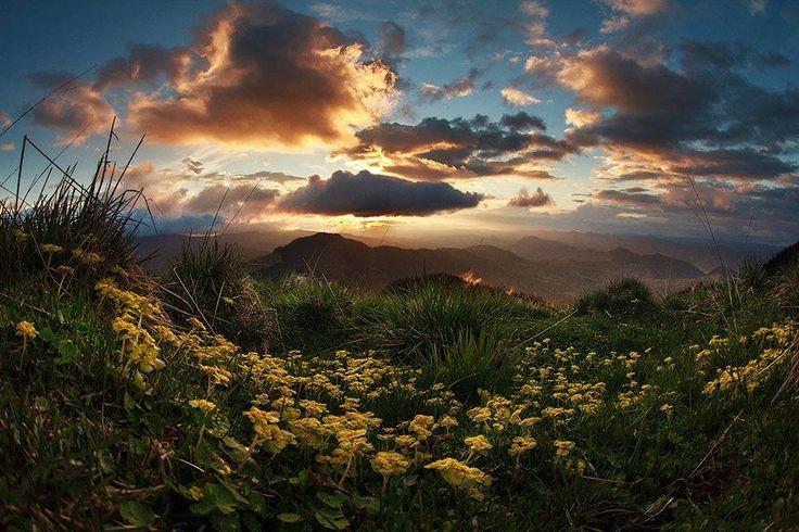 Vârful Rarău  Un loc potrivit pentru iubitorii de munte si de natură. Se află la 14 kilometrii de Câmpulung Moldovenesc iar drumul este recent restaurat, lucru ce permite accesul cu orice tip de maşină. În apropiere se găsesc Pietrele Doamnei, stânci cu vastă poveste. Astfel, în orice direcţie ai privi, vei vedea un peisaj şi mai atractiv. În zonă există diverse posibilităţi de cazare, inclusiv Cabana Rarău, care este situată chiar acolo.