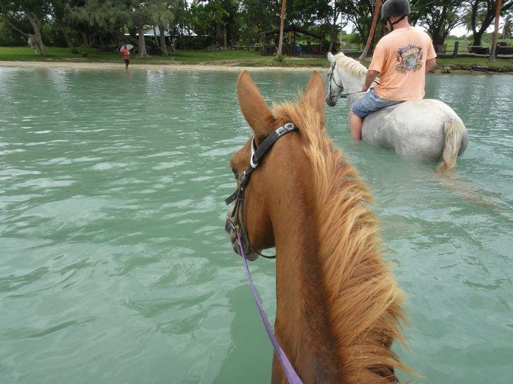 Club Hippique Adventure Park (Port Vila, Vanuatu): Top Tips Before You Go - TripAdvisor