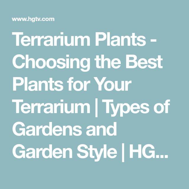 Terrarium Plants - Choosing the Best Plants for Your Terrarium   Types of Gardens and Garden Style   HGTV