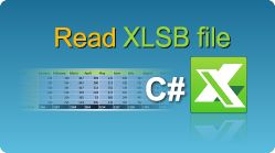 Read XLSB file in C#.NET using EasyXLS Excel library! See sample code! #Excel #CSharp #XLSB