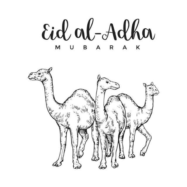 Islamic Eid Al Adha Hajj Muslim Mubarak Vector Clip Art Illustration Graphic Design Greeting Card Sketches Card Illustration Eid Al Adha Greetings