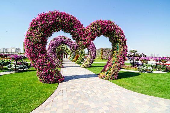 New attraction in Dubai   The worlds biggest Flower Garden   32 PHOTOS