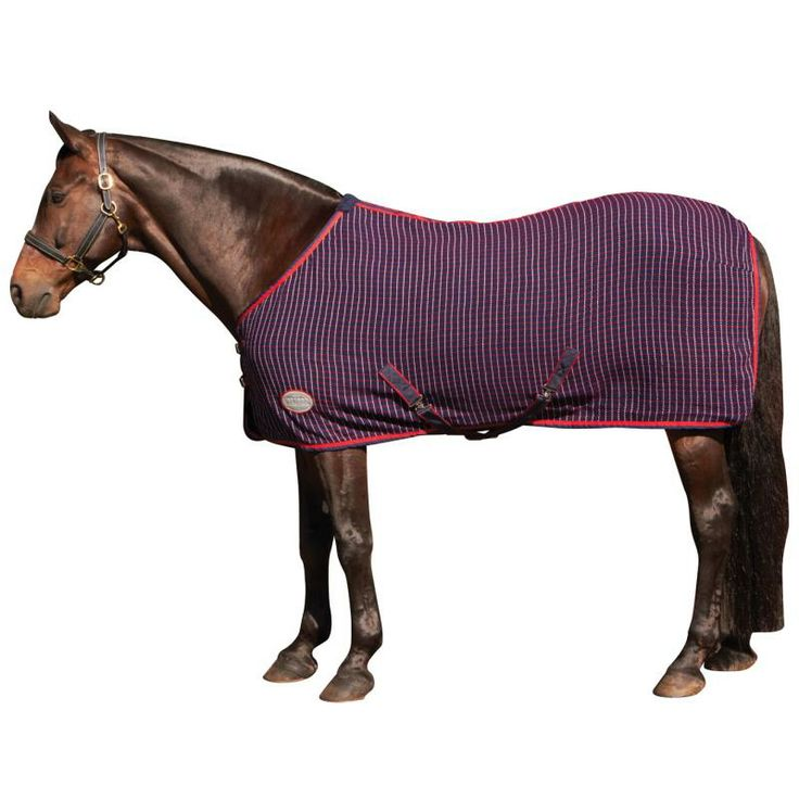 Weatherbeeta Waffle Cooler Standard Neck Navy Red White Goyt Mill Saddlery